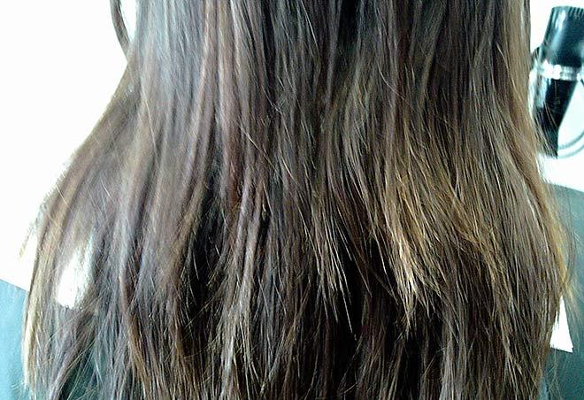 Das Klettenkastoröl für die Dichte des Haares